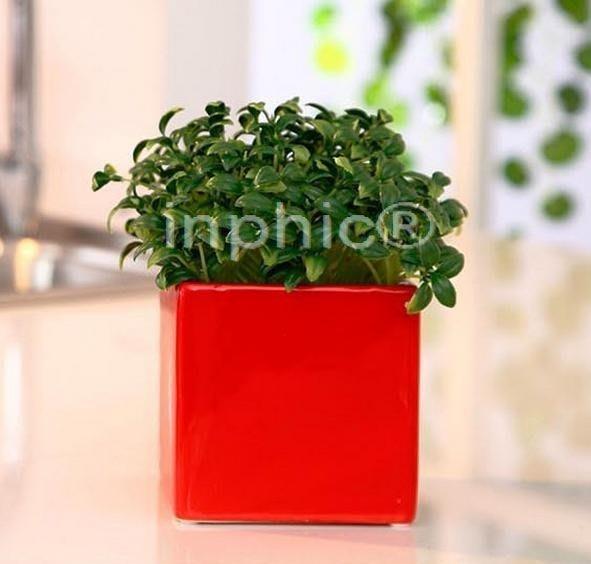INPHIC-極簡主義釉亮工藝 陶瓷花盆配仿真花菠蘿草 小 家居飾品