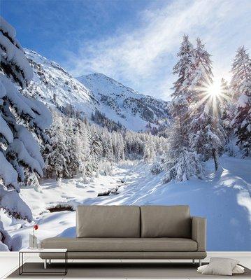 客製化壁貼 店面保障 編號F-547 冬季雪景 壁紙 牆貼 牆紙 壁畫 星瑞 shing ruei