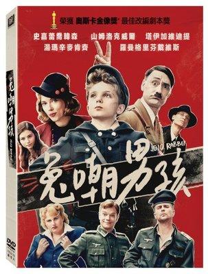 河馬音像~電影  兔嘲男孩  DVD  全新正版_起標價=直購價109/5/7
