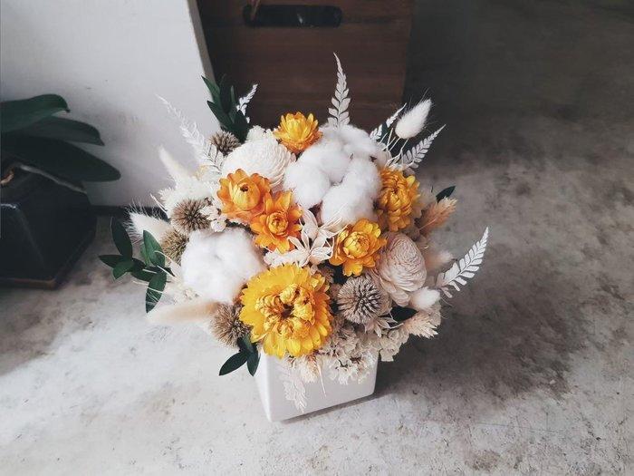 D100。黃白綠色系乾燥盆花s。台北歡迎自取。西門【Flower&House花藝之家】