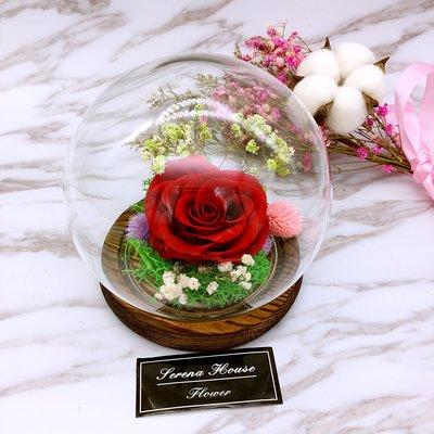 ~Serena House~不凋花永生花 美女與野獸 交換禮物 紅玫瑰永生花水晶球玻璃盅 婚禮小禮 生日禮物 婚禮布置
