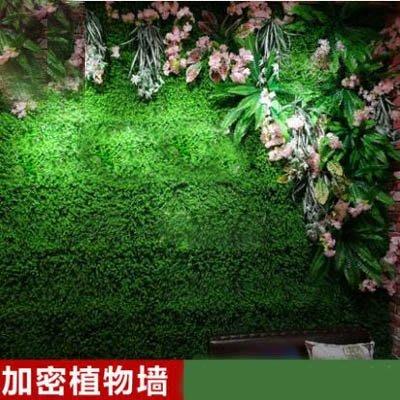 1【模擬植物牆草底-特密米蘭草坪-40...