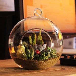 【喵喵的小窩】迷你屋 diy小屋可懸吊掛玻璃球 玻璃燭台 多肉植物玻璃盆栽 開口玻璃球  12cm(開口6.5cm)