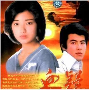 【血疑/赤い疑惑】山口百惠 三浦友和 國語 29集2碟DVD