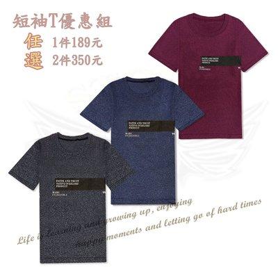 現貨 百搭 IS`store 個性潮流MIT棉質中性 素面 仿皮布Logo圖案 男女款 短袖T恤~台灣製 B03