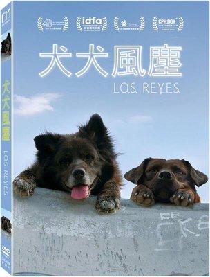 (全新未拆封)犬犬風塵 Los Reyes DVD(得利公司貨)
