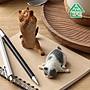逢甲 爆米花 全新 特價 研達 朝隈俊男 動物生活 瑜珈貓 貓瑜珈大師 全六種 沒有糖果 沒有一中盒