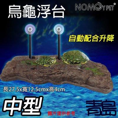 Y。。。青島水族。。。NS-81中國N...