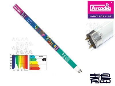 五1中0↓B。。青島水族。。。J-FMB18英國Arcadia阿卡迪亞---T8-海水長效培養燈管==18W