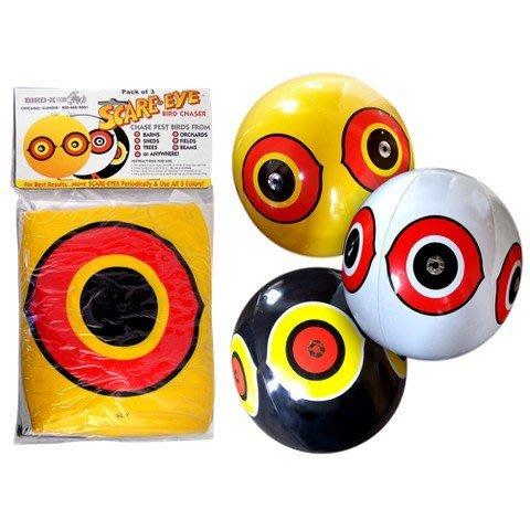 「香港商莊臣」(3入1組)BD0010驚嚇眼氣球(Scare-Eye Balloons)有效驅走不速之鳥-花藝園 民宿