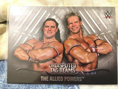 【五件免運】WWE傳奇雙打Allied Powers限量50高價銀版厚卡 TOPPS UNDISPUTED非簽名