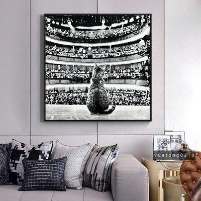 現貨促銷~有框畫帶雙背板 戲劇人生 貓咪 可愛 卡通 動物 黑白色北歐ins裝飾畫 餐廳掛畫 別墅玄關壁貼 生日禮物~x