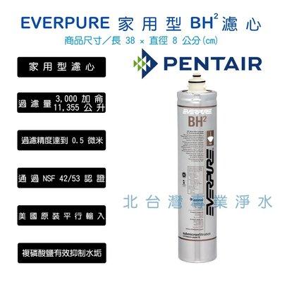 超取兩支免運 美國原裝平行輸入 愛惠浦 BH BH2濾心 EVERPURE H系列抑制水垢  HS288 雙溫加熱器濾心