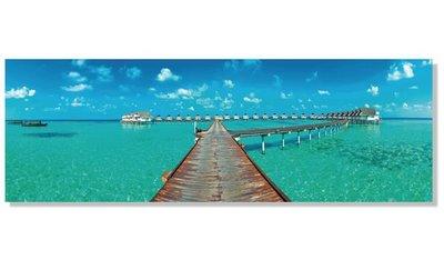 聚鯨Cetacea﹡Art【馬爾地夫TI-75710印製畫】Maldives民宿餐廳客廳走廊玄關擺飾牆壁飾品