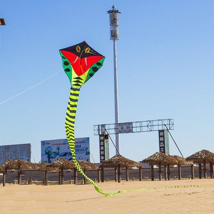 奇奇店-大蛇濰坊大型風箏帶線輪套裝 成人微風易飛 新款#美觀設計 #到手即飛 #微風好飛
