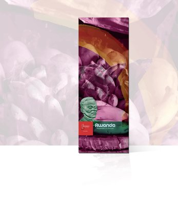 【豐原哈比店面經營】盧安達 尼歐西莎處理廠 波旁 圓豆-咖啡豆