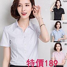 韓國MM=韓版棉白襯衫女短袖夏裝半袖工作服正裝工裝大碼襯衣職業女裝ol =正式襯衫白色女襯衫上班襯衫商務襯衫正式襯衫
