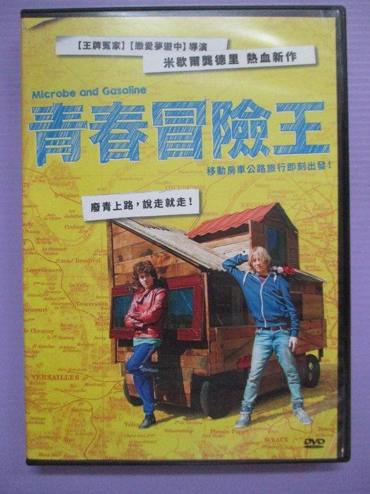 【大謙】《 青春冒險王 》台灣正版二手DVD