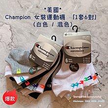 *美國* Champion 女裝運動襪 「1套6對」(白色 / 混色)