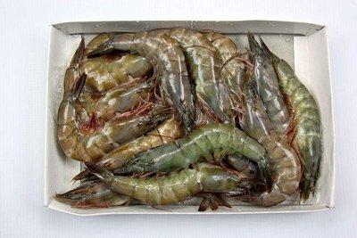 【萬象極品】活凍白蝦(21/25) /約 600g~殼薄新鮮~肉嫩味美~鮮甜便宜又好吃~