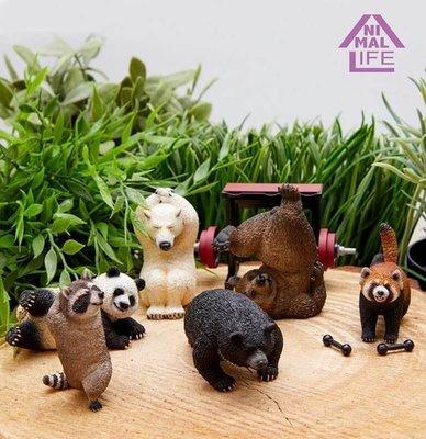 【動漫瘋】正版 盒玩 Animal Life 動物生活系列 Shaking 朝隈俊男 公仔 中盒8入
