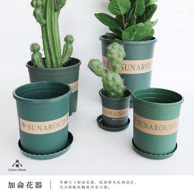 (台中可愛小舖)加侖盆 可排水 托盤瀝水 花盆 塑膠 盆栽 園藝 菜盆 青山控根 種樹種花