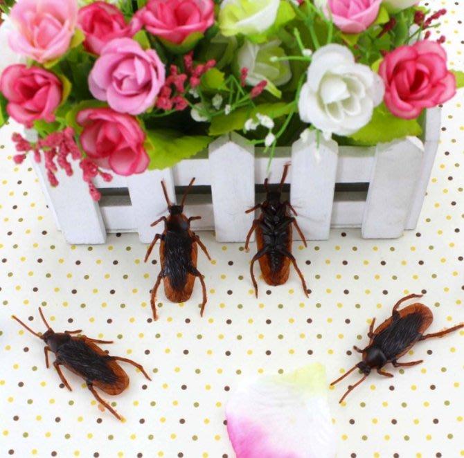 整人玩具 派對小物 假蟑螂 嚇到吃手手 仿真蟑螂 塑膠蟑螂 整人蟑螂 逼真假蟑螂 小強 愚人節 搞笑 整人 【HT61】