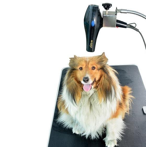 寵物吹風機狗狗吹水機支架 固定支架 美容桌臺支架