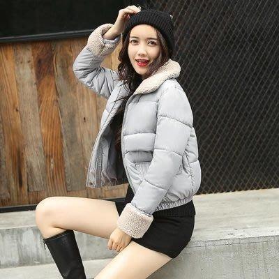 羽絨外套 短款夾克-寬鬆羊羔毛翻領修身女外套7色73pa35[獨家進口][米蘭精品]