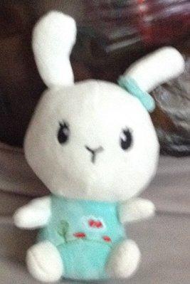 全新可愛兔