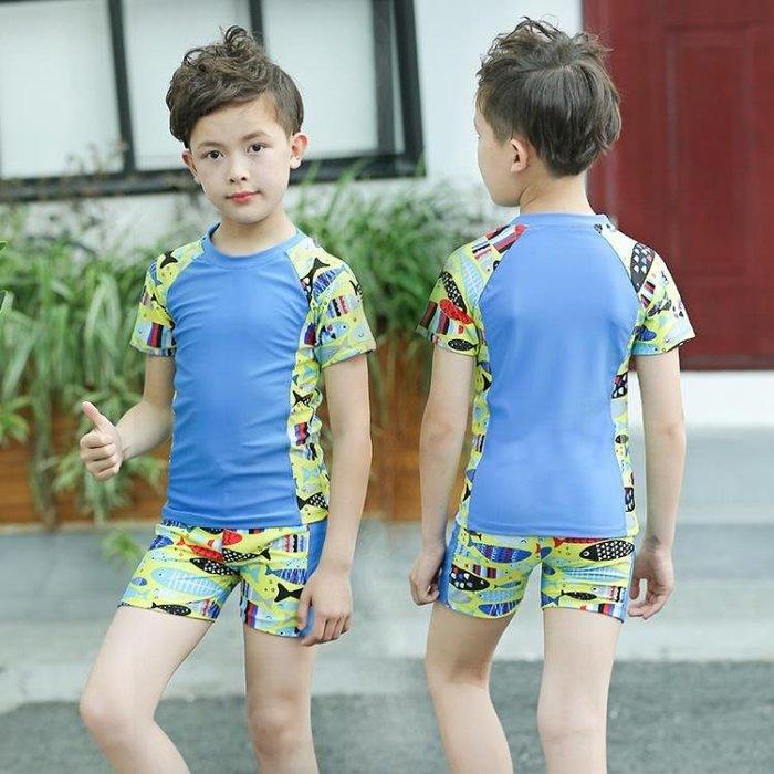 兒童泳衣男童泳褲套裝男孩分體中小童可愛印花卡通游泳衣送帽  XY1440