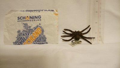 歐洲玩具毒蜘蛛-隻Spider toy from Europe