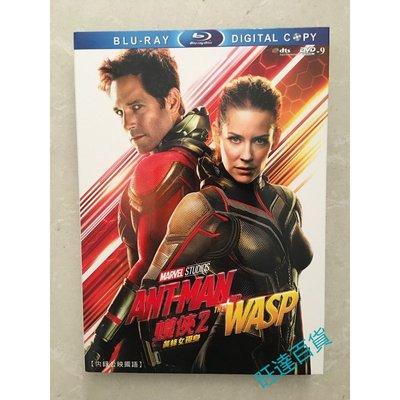 電影 蟻人2:黃蜂女現身/蟻俠2:黃蜂女現身/蟻人與黃蜂女 DVD 高清 全新盒裝