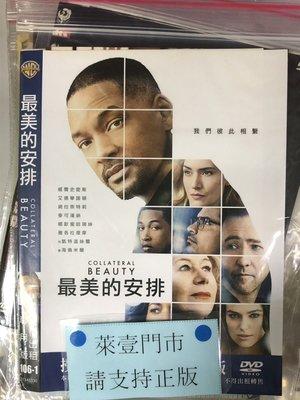 萊壹@51304 DVD 有封面紙張【最美的安排】全賣場台灣地區正版片
