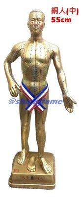 【上發】中醫 穴位 銅人 人體模型 55cm 18銅人 經絡 針灸 體穴位  非市面上劣質品 玻璃纖維 非塑膠 台灣製