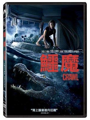 (全新未拆封)鱷魔 Crawl DVD(得利公司貨)