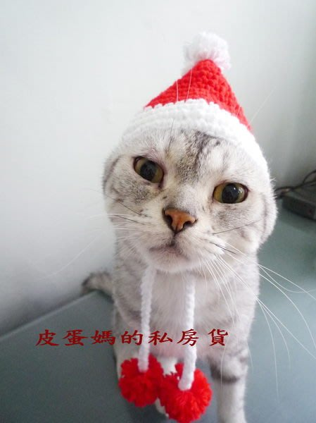 【貓帽子/狗帽子】聖誕帽/生日帽-手工編織:::手工毛線帽:::辮子針織-寵物帽子