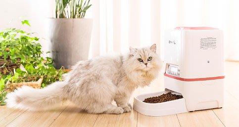二代寵物自動餵食機 小食量5~195克 智能餵食寵物 可錄製主人聲音叫寵物吃飯 大容量  一日四餐3L大容量 小型貓犬用