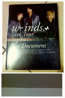w-inds. Live Tour ageha The Document