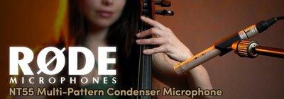 造韻樂器音響- JU-MUSIC - 全新 RODE NT55 Matched Pair 錄音室 電容麥克風 直播