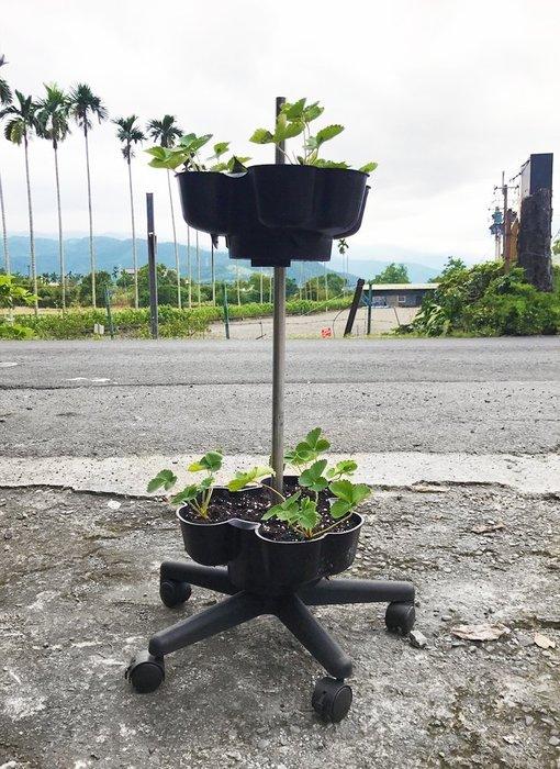 *可移動菜園*雙層附輪立體植栽花盆,草莓塔蔬菜塔,適合都市農夫陽台有機種植、農場大量栽種,栽培塔/立體種菜箱/盆栽園藝資材