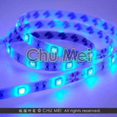 12V-500cm藍光LED-5050-SMD軟條燈(滴膠) - 藍光 led 軟條燈 軟燈條 條燈 燈條 .