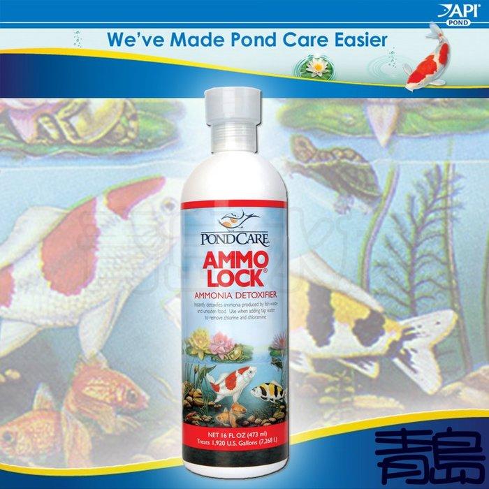 B。。。青島水族。。。D225美國API魚博士-----池塘阿摩尼亞鎖定劑 NH3/NH4==473ml/免運費