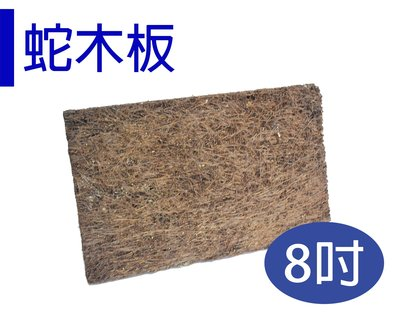 *滿1200免運*【ED007-S】天然蛇木板 保水通氣性佳/8吋蛇木板/單片裝 【園丁花圃】