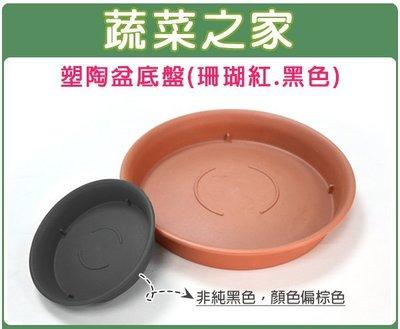 全館滿799免運【蔬菜之家005-L0...