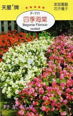 【野菜部屋~】Y06 四季海棠Begonia Fibrous-rooted~~天星牌原包裝種子~每包15元~