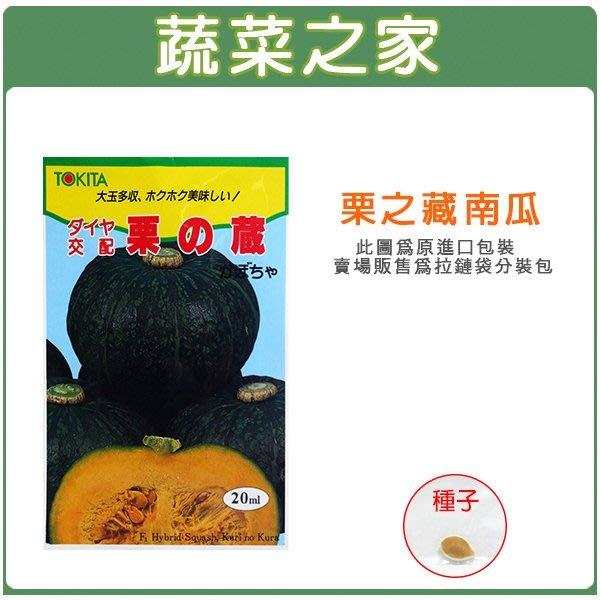 【蔬菜之家】G47.栗子南瓜種子1顆(栗の藏)(日本進口.F1.果皮濃綠色.肉濃澄黃色.口感極佳.果重約2kg.蔬菜種子