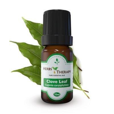 【植物療法】HERBS THERAPY 丁香葉 精油 30ml