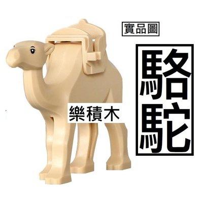樂積木【當日出貨】R31 品高 駱駝 現貨袋裝 1049 非樂高LEGO相容 金字塔 沙漠 CITY 60161 動物 台北市