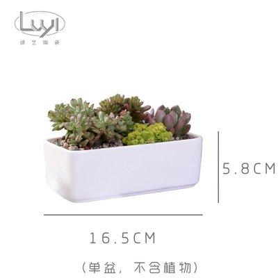 100元//插乾花//種多肉---大長方花器//精緻白色瓷器